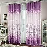 Tongshi sombreado floral de la gasa de la cortina de puerta divisor de la cortina de ventana de habitaciones (H)