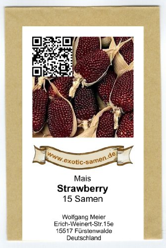 Mais – Popcorn Mais – Ziermais – Strawberry (15 Samen)