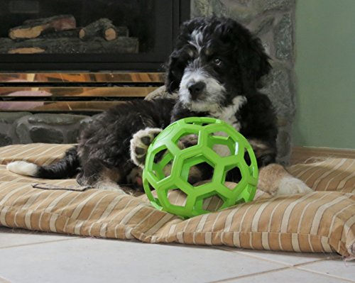 JW Pet Hol-ee Roller Rubber Dog Toy, Size 6.5 Inches, Large size [Misc.] by JW Pet -