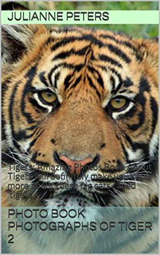photo-book-photographs-of-tiger-2-tigers-amazing-photos-book-about-tigers-will-definitely-make-you-k