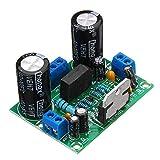 Amplificador Audio TDA7293 AC12-32V 100W Mono Amplificador Placa única Canales Digitales para Arduino - ILS