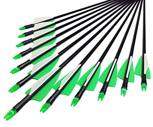 MEJOSER 24 Stück Fiberglaspfeile 28 Zoll Pfeile für Recurvebogen Sportbogen Bogenschiessen (grün)