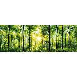 ARTBAY Wald Poster XXL, Panorama Kunstdruck - 118,8 x 42 cm, von Sonne durchfluteter, Zauberhafter, heimischer Wald   Wandposter, Fotoposter, Wandgestaltung   Natur Poster  Premium Qualität