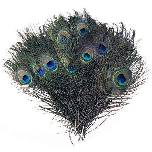 cm Pfau Auge Schwanz Federn Natur Dekoration Basteln Home Dekoration, Kostüme, Hochzeit Mittelstücke - blau, Blau, Set mit 25 ()