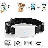 Haustier GPS Tracker, TKSTAR Hund Katze GPS Tracker mit Halsband Anti Verlorene GPS Ortung Echtzeit GPS Tracking Locator Hundehalsband Training GPS Outdoor Navigation mit Free APP