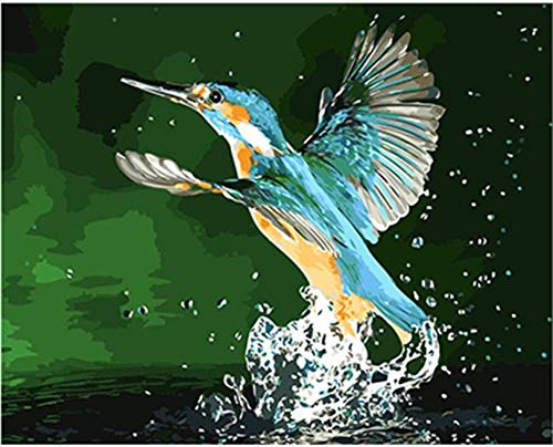 Suubboo Rahmenlos Malen Nach Zahlen Wasser Eisvogel DIY Malerei Bild Malerei Kalligraphie Nach Nummer Färbung Nach Anzahl Home Decor 40X50Cm