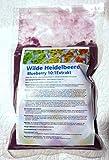 Wilde Heidelbeere/Blueberry Extract 10:1 Pulver, Anthocyane konzentriert (200g)
