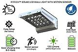 #10: IIFITech Solar Light