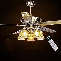 In stile europeo, ventilatore a soffitto Lampada Ristorante Ferro Foglia