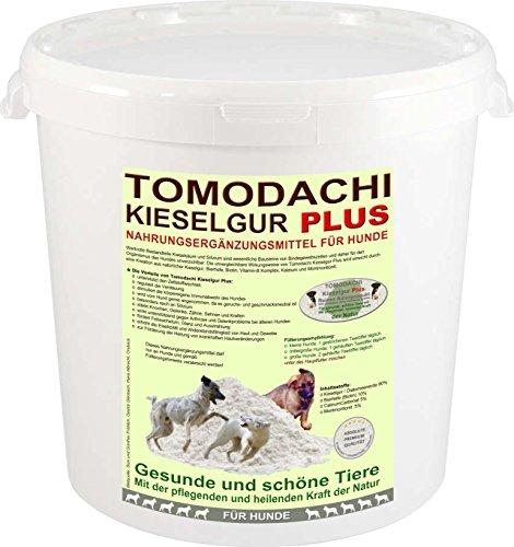 Artikelbild: Nahrungsergänzung Hund, Silizium Plus Biotin für Haut, Fell, Knochen und Krallen, Kieselerde Plus Bierhefe, Futterzusatz für Hunde, besonders reich an Silizium - gesunde Haut, glänzendes Fell, stärkt Knochen, Zähne, Sehnen und Krallen, beugt Hautreizungen vor, löst Verdauungsprobleme, Tomodachi Kieselgur Plus Biotin 10 Liter Eimer