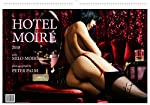 HOTEL MOIRÉ ist ein künstlerischer Aktkalender (2018) mit Milo Moiré fotografiert von Starfotograf Peter Palm. Intime Momentaufnahmen in Moiré's Hotelzimmern laden zum hautnahen Träumen mit der verführerischen Muse ein. Der Betrachter ist mittendrin ...