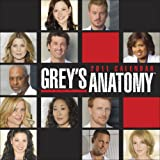 Grey's Anatomy 2011 Wall Calendar