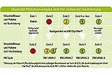 HJS 93 13 2084 Original-DPF« City-Filter Nachrüstsatz, Ruß-/Partikelfilter