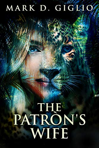 The Patron's Wife book cover