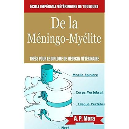 De la méningo-myélite