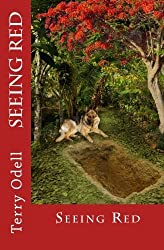 Seeing Red: From the Case Files of Detective James T. Kirkland by Terry Odell (2014-12-21)