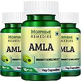 Morpheme Remedies Amla Vitamin C & AntiOxidant 500mg Extract (60 Veg Capsules, Pack of 3)