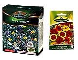Insektentreff | Blumenwiese | 1x Schöngesicht kostenlos