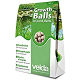 Estanque Planta Crecimiento bola