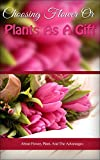 Choosing Flower or Plants as a Gift: About Flower, Plant, And The Advantages
