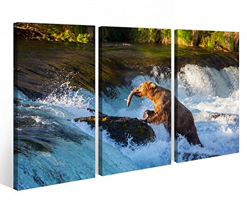 Leinwandbild 3 Tlg. Bär Grizzlybär Grizzly Alaska Jagd Leinwand Bild Bilder auf Keilrahmen Holz - fertig gerahmt 9O830, 3 tlg BxH:90x60cm (3Stk 30x 60cm) (Alaska Tee)