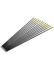 """12 pcs Fibreglass Archery Arrows with Plastic Tip Suits Compound & Recurve Bow 28"""" 30"""" 32"""""""