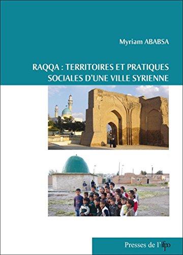 Raqqa, territoires et pratiques sociales d'une ville syrienne (Contemporain publications) par Myriam Ababsa