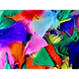Assorted Coloured Feathers- 50g bag by Bright Ideas