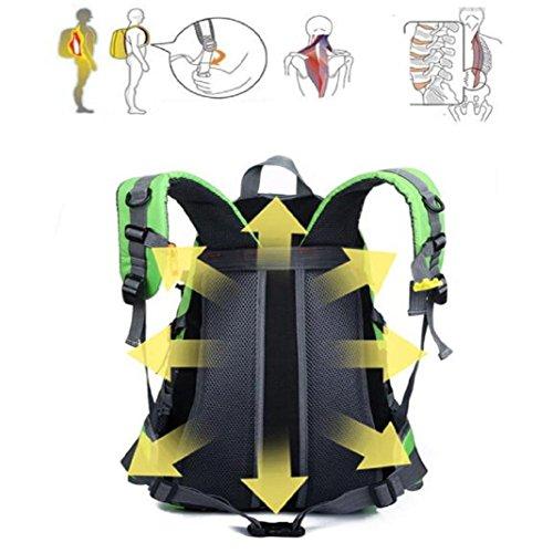 Lanspo 40L Rucksack Outdoor Wandern Camping wasserdicht Nylon Reisegepäck Rucksack Rucksack Tasche für Männer Frauen Grün