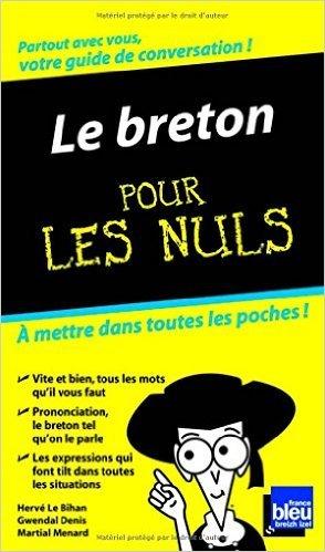 Le Breton Guide de conversation Pour les nuls de Gwendal DENIS ,Herv LE BIHAN ,Martial MENARD ( 30 avril 2009 )