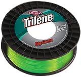 Berkley Trilene Big Game 30LB 0.48MM 600M SOL