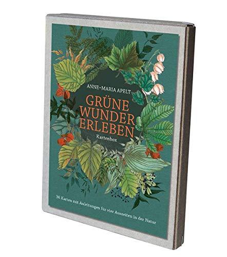 Grüne Wunder erleben - 36 Karten mit Anleitungen für vier Auszeiten in der Natur: Kartenbox