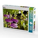 Magnolie 1000 Teile Puzzle hoch (CALVENDO Natur)