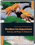 Krebse im Aquarium. Haltung und Pflege im Süßwasser