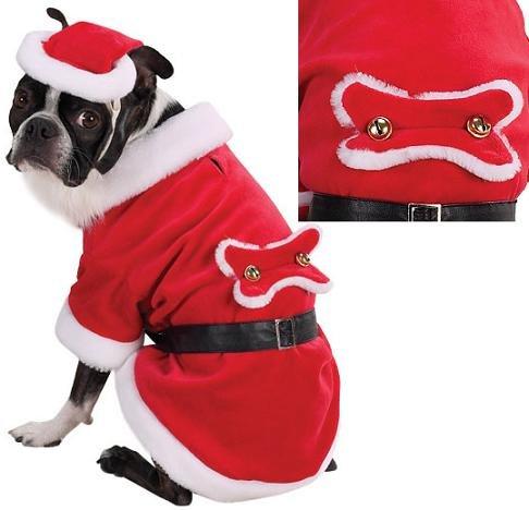 ws Hunde Kostüm Medium (Liebenswerte Hunde In Kostüme)