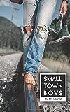 Scarica Libro Small Town Boys (PDF,EPUB,MOBI) Online Italiano Gratis