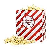 Popcornloop Popcorntüten Original 25 Stück Vorteilspack Rot-Weiß Gestreift Papier 5x5 Stück Insgesamt 25 Tüten Größe M