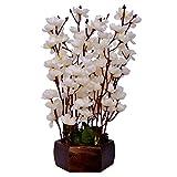 Yash-Enterprises-White-Cherry-Blossom-with-Wooden-Pot