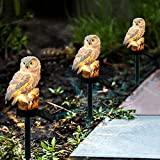 Hamkaw Luz Solar al Aire Libre,Resin Owl LED La Estaca de Jardín Solar Decorativa...