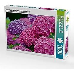 Gartenhortensie (Hydrangea macrophylla) 1000 Teile Puzzle quer