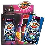 24er Instant Getränkepulver Blueberry Bolero Heidelbeere mit Stevia
