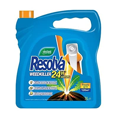Resolva 24h Ready to Use Weedkiller, 1 L