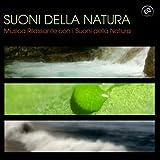 Suoni della Natura - Musica Rilassante con i Suoni della Natura