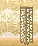 LightSei- Moderne Minimalist Kreative Wohnzimmer Schlafzimmer Arbeitszimmer Raum Weiß Led Ausgehöhlte Skulptur Stehlampe 14 * `14 * 60cm