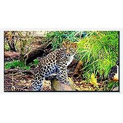 wandmotiv24 Cuadro de Lienzo Pequeño Leopardo 100x50cm (Ancho x Alto) Panoramabild Fotoleinwand Art Prints Canvas Art Photo Regalos Regalos Holzrahmen einteilig