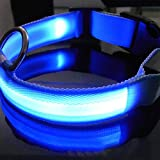 LED Hunde Nacht Sicherheit Halsband Blinklicht Up Collar Blau Nylon (L, blau)