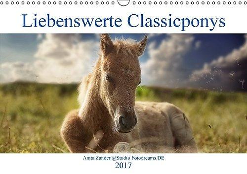 Anita Zander Liebenswerte Classicponys (Wandkalender 2017 DIN A3 quer)