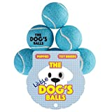 The Little Dog's Balls - 6 Small Premium Blue Tennis Balls for Dogs, Dog Toy Mini Ball for Your Puppy, Small Dog or Cat. For Puppy Exercise, Puppy Play, Small Dog Play, Puppy Training & Fetch. 6 Authentic Tennis Balls for a Smaller Mouth, Too Small for Ch