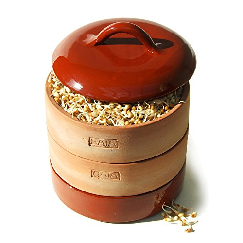gaia-clay-sprouter-fired-brown-nutritious-seed-sprouter-germinator