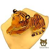 Pequeño bebé Brown Tiger 30cm DELUXE PAWS